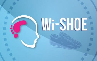 WiShoe – A novel Wireless, wearable Shoe-based system for real time monitoring of Energy Expenditure and Gait parameters for Sport and Medical Applications